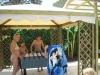 Arcobaleno resort capo vaticano 17.JPG